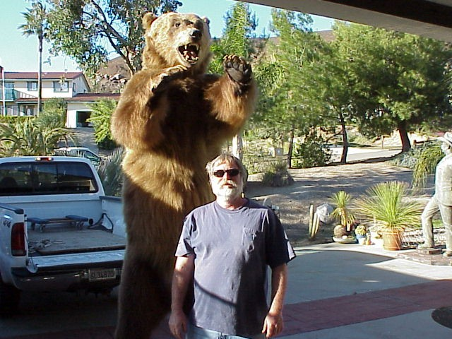 Alaskan Kodiak Bear taxidermy in 1927 Full Mount