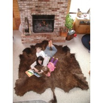 Buffalo Robe approx 50sq feet Winter Coat BT/NA